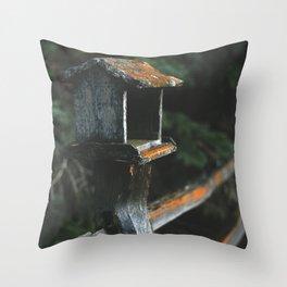 Minnesota River Bottoms I Throw Pillow