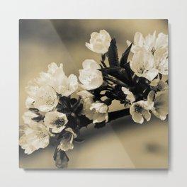 Bloom #1 Metal Print