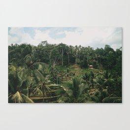 Bali Tegalalang Canvas Print