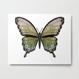 mossy seraph (Seraphicus meos) Metal Print