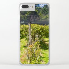 Blueberry Bushes Under Netting Clear iPhone Case