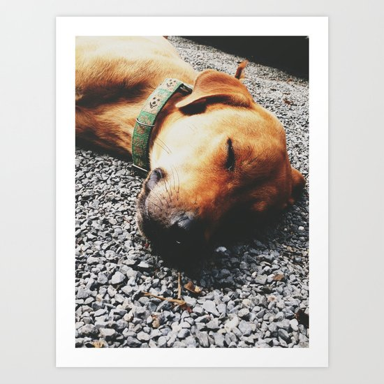 Dreaming Singto Art Print