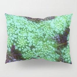 Green Queen Anne's Lace Landscape Pillow Sham