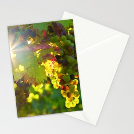 Wine Grapes in the Sun Stationery Cards