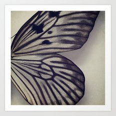 Black and Grey Wing Art Print