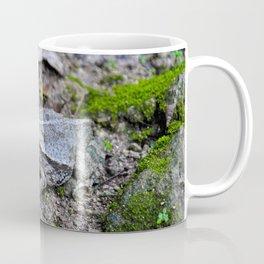 Croak Coffee Mug