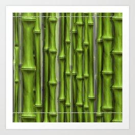 BambooGreen by John Logan Art Print