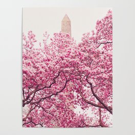 New York City - Central Park - Cherry Blossoms Poster