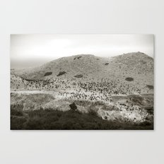 Aviary Canvas Print