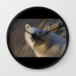 Blind to the Dying Sun Wall Clock