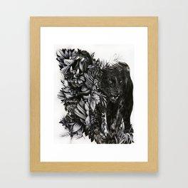 Black Jaguar Framed Art Print
