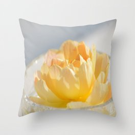 Yellow Rose in Crystal Bowl Macro Floral Photography Throw Pillow