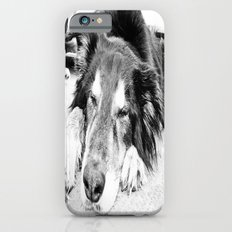 Tired Old Dog Slim Case iPhone 6s