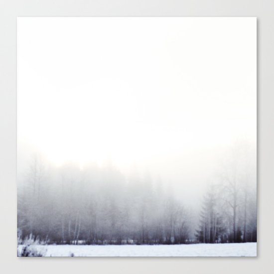 Foggy winter day Canvas Print
