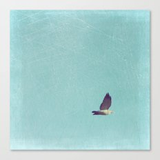 Crossing Pale Blue Skies Canvas Print