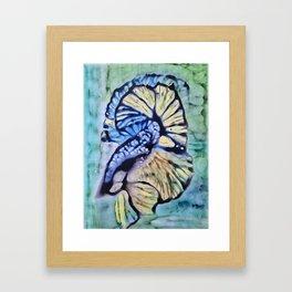 Gamma Fish Framed Art Print