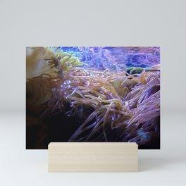 Anemone Mini Art Print