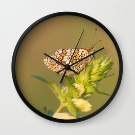 Knapweed Fritillary Wall Clock