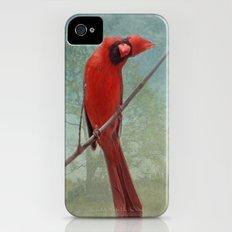 Whatcha Doing? Slim Case iPhone (4, 4s)