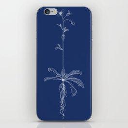Arabidopsis (Blueprint) iPhone Skin