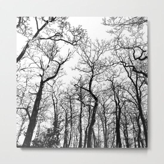 The Dark Forest Metal Print