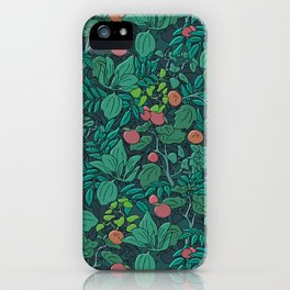 Princess of the Magic Forest iPhone Case