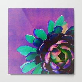 Pink Purple & Teal Succulent Flower Metal Print