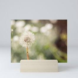 Delicate Dandelion Seedhead Mini Art Print