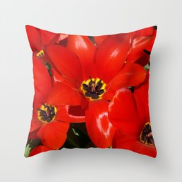 Seductive Red Throw Pillow
