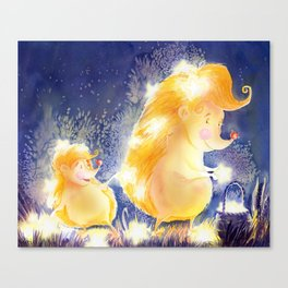 Wish upon a falling star Canvas Print