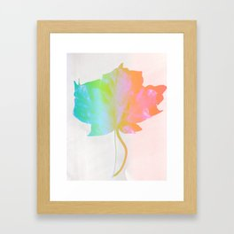 Fall Colors 3 Framed Art Print