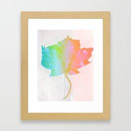Fall Colors 3 Framed Art Print