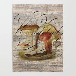 fall autumn nature woodland french botanical mushroom Poster