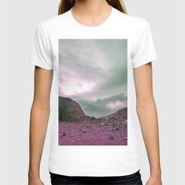 Pink Norway - Norwegian Lapponian Gate T-shirt