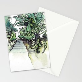 Olive Trees on the Camino Portugués  Stationery Cards