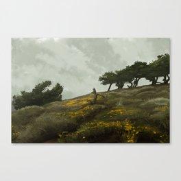 wind rises Canvas Print