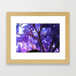 Avitar 2 Framed Art Print