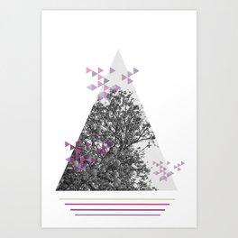 Botanica photography III collection Art Print