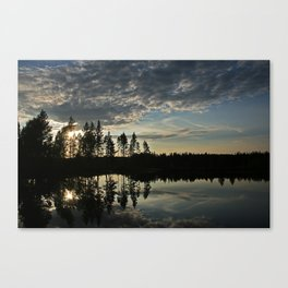 Symmetrical Pine Valley  Canvas Print