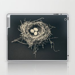 bird nest Laptop & iPad Skin
