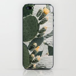 flowering cactus i iPhone Skin