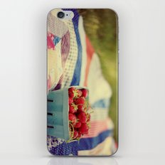 The Picnic iPhone & iPod Skin