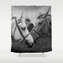 Horses of Instagram II Shower Curtain
