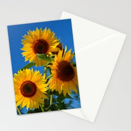 Three bright sunflowers Stationery Cards