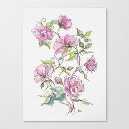 Pink Climbing Rose Canvas Print