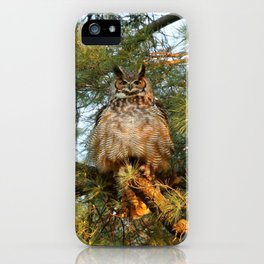 In all of her glory iPhone Case