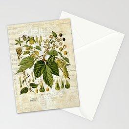 Common Hop Botanical Print on Vintage almanac collage Stationery Cards