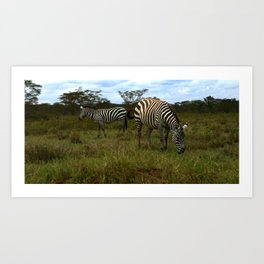 Are Stripes Really Slimming? Art Print