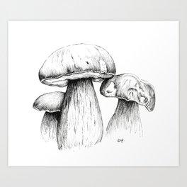 Boletus Satanas Mushrooms Art Print