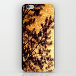 Pine Silhouette at Sunset #decor #society6 iPhone Skin